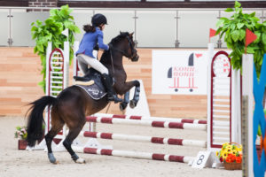 equestriansofiastrizhakova