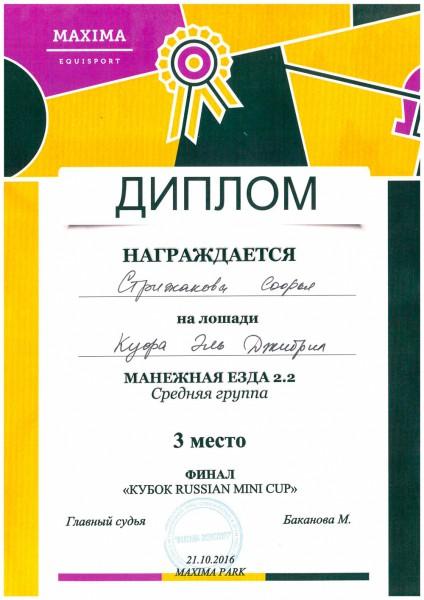 doc02791820161108124551